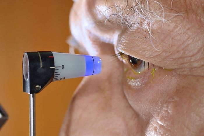 Восстановить зрение с помощью черники