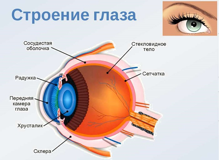 Купить очки близорукость на алиэкспресс