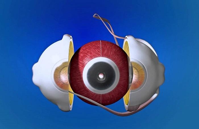 Низкое зрение: причины, упражнение, видео
