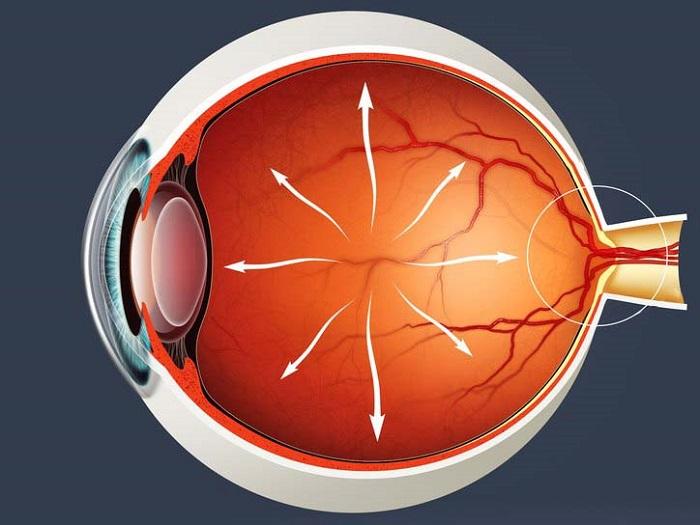 Сокращение поля зрения или потеря периферического зрения