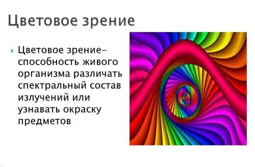 Особенности цветового зрения